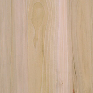 Poplar Wood None (Unfinished) Sample